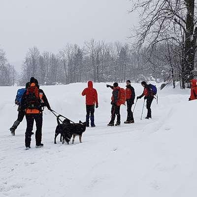 71-članska  ekipa,  reševanje je oteževalo vreme, je z iskanjem pogrešane 81-letne Gorenjke zaključila v ponedeljek popoldne.