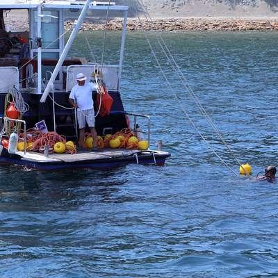 Rumeni plovki označujejo 150-metrski pas, namenjen kopalcem.  Foto: Zdravko Primožič/FPA