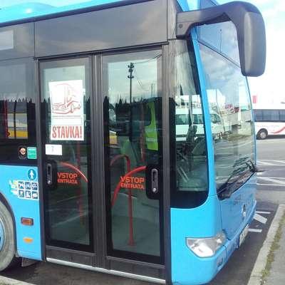 Avtobusni vozniki Arrive  stavkajo že osmi dan zapored.  Foto: Nataša Čepar