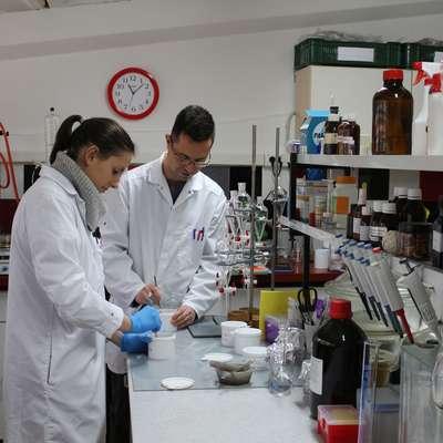 Laboratorij Inštituta za oljkarstvo deluje spet v starih prostorih.   Foto: Nataša Čepar