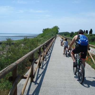 Kolesarska pot od izliva Soče v morje do Gradeža je primerna tudi  za družinski kolesarski izlet.