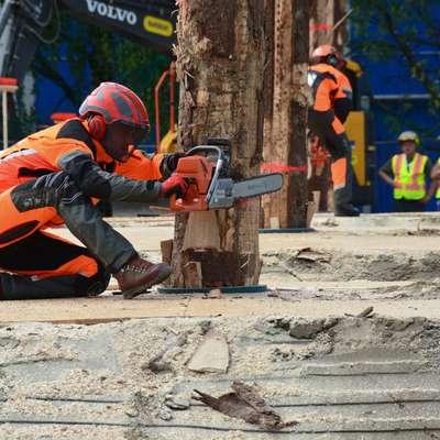 Janez Meden je osvojil drugo mesto v podiranju drevesa in dosegel  najboljšo uvrstitev Slovencev na svetovnih prvenstvih v gozdarskih veščinah.