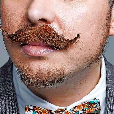 Brki, zaščitni znak meseca in gibanja Movember za ozaveščanje moških o raku na prostati. Foto: spletna stran Movember